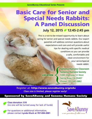 Basic Care for Senior and Special Needs Rabbits: A Panel