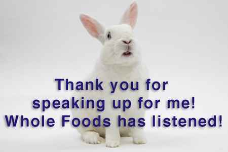 Whole Foods ends the sale of rabbit meat   SaveABunny